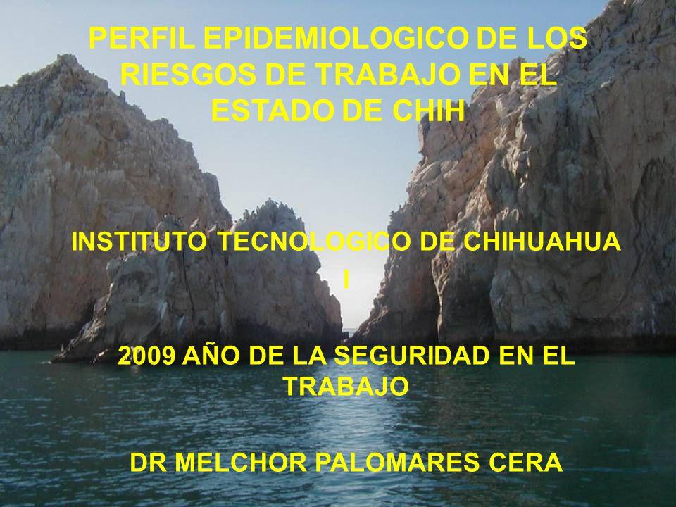 PERFIL EPIDEMIOLOGICO DE LOS RIESGOS DE TRABAJO EN EL ESTADO DE CHIH INSTITUTO TECNOLOGICO DE CHIHUAHUA I 2009 AÑO DE LA SEGURIDAD EN EL TRABAJO DR ME