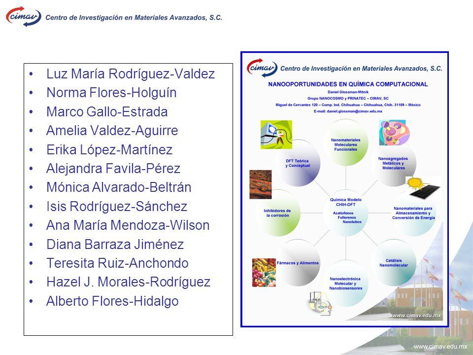Luz María Rodríguez-Valdez Norma Flores-Holguín Marco Gallo-Estrada Amelia Valdez-Aguirre Erika López-Martínez Alejandra Favila-Pérez Mónica Alvarado-