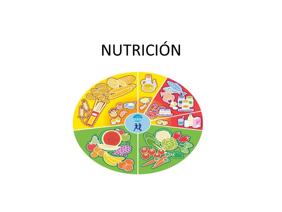 INTRODUCCIÓN La nutrición hace referencia a los nutrientes que componen los alimentos y comprende un conjunto de fenómenos involuntarios que suceden tras la ingestión de los alimentos, es decir, la digestión, la absorción o paso a la sangre desde el tubo digestivo de sus componentes o nutrientes, y su asimilación en las células del organismo.