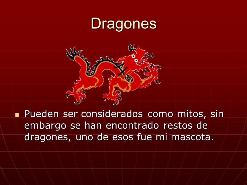Dragones Pueden ser considerados como mitos, sin embargo se han encontrado restos de dragones, uno de esos fue mi mascota. Pueden ser considerados com