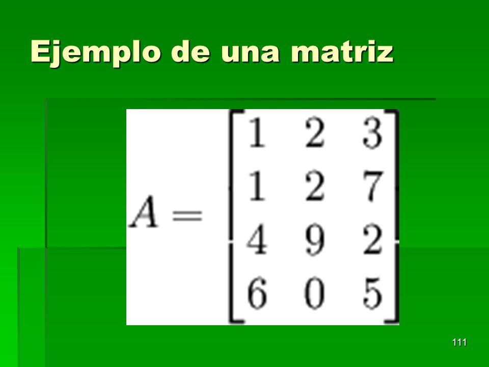 Ejemplo de una matriz 111