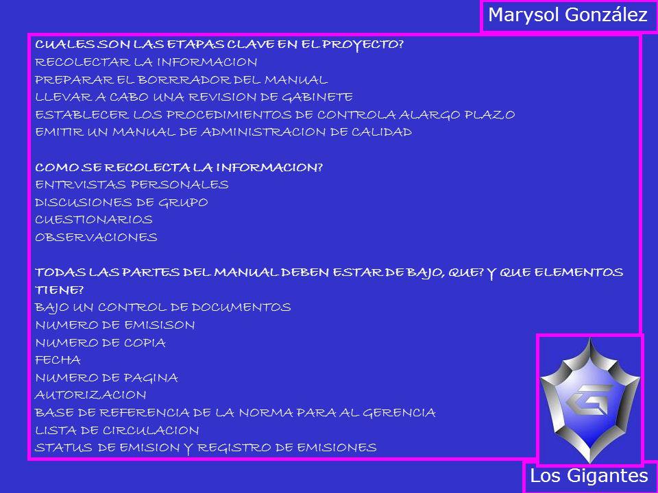 CUALES SON LAS ETAPAS CLAVE EN EL PROYECTO? RECOLECTAR LA INFORMACION PREPARAR EL BORRRADOR DEL MANUAL LLEVAR A CABO UNA REVISION DE GABINETE ESTABLEC