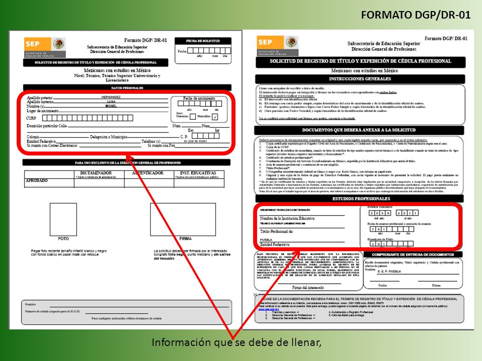 Información que se debe de llenar, FORMATO DGP/DR-01