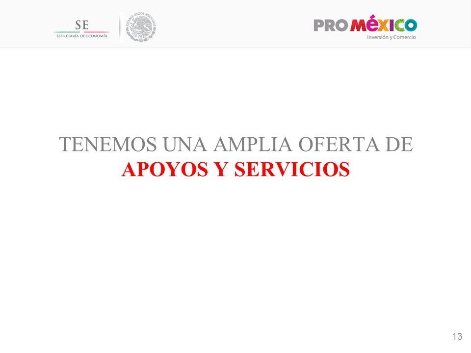 TENEMOS UNA AMPLIA OFERTA DE APOYOS Y SERVICIOS 13