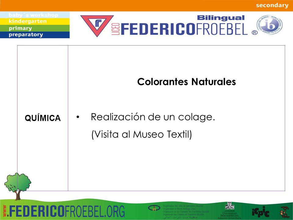 QUÍMICA Colorantes Naturales Realización de un colage. (Visita al Museo Textil)