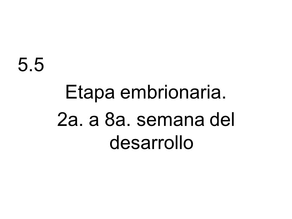 DESARROLLO DE SOMITAS.