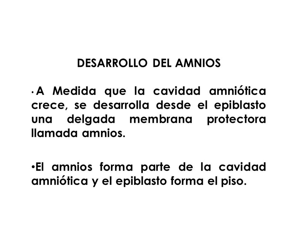 DESARROLLO DEL AMNIOS A Medida que la cavidad amniótica crece, se desarrolla desde el epiblasto una delgada membrana protectora llamada amnios.