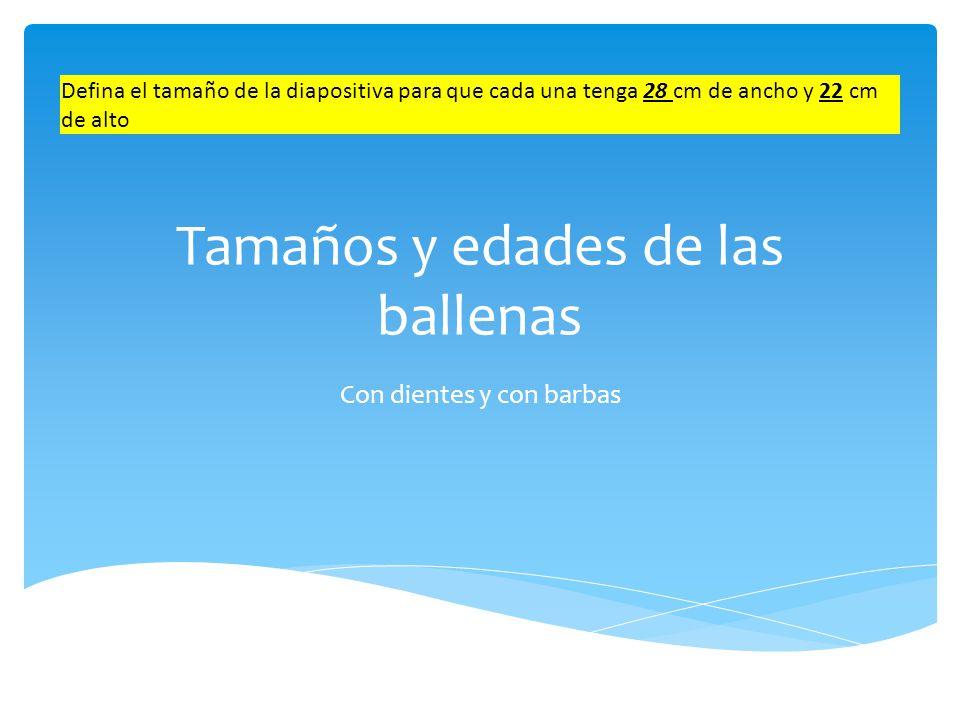 Ballenas con dientes Agregue un pie de página en la presentación que contenga el texto: Ballenas: tamaños y edades.