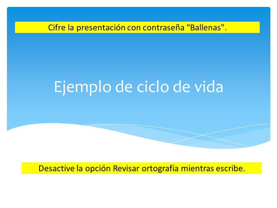 Ejemplo de ciclo de vida Cifre la presentación con contraseña Ballenas