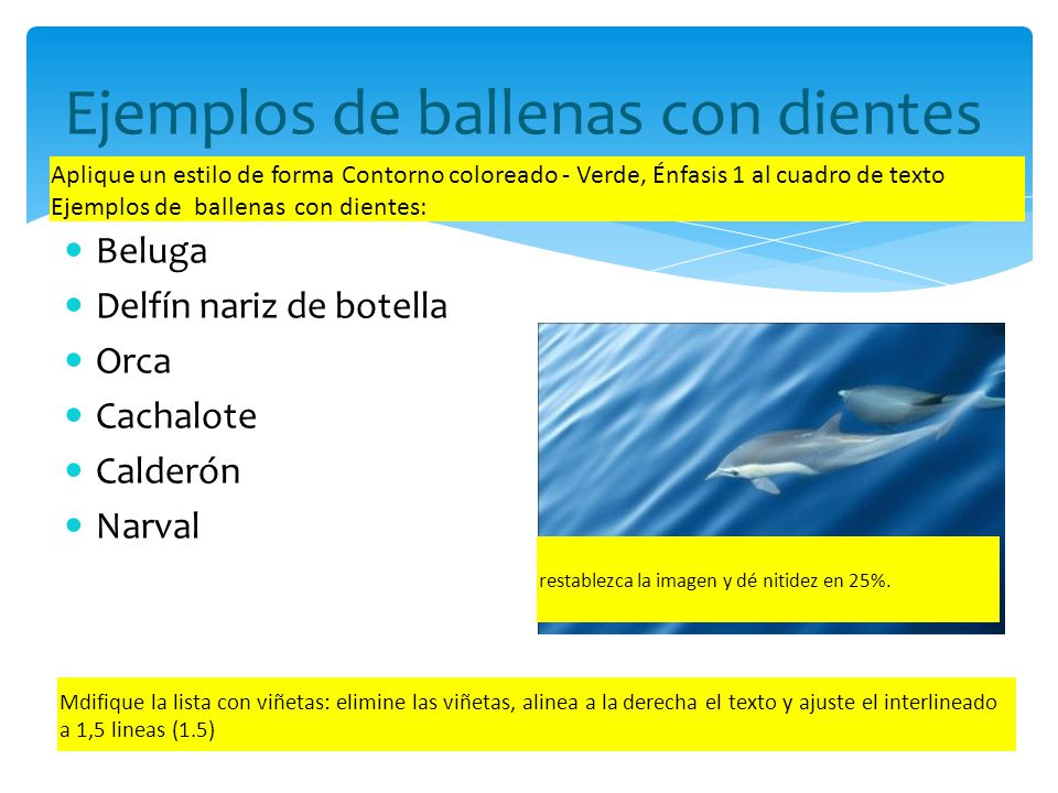 El largo, el peso y la edad promedio de 6 ballenas con dientes Ballenas con dientes Aplique el estilo diseño 23 al gráfico Modifique el gráfico de manera que el eje vertical vaya de 0 a 100 en unidades de 20.