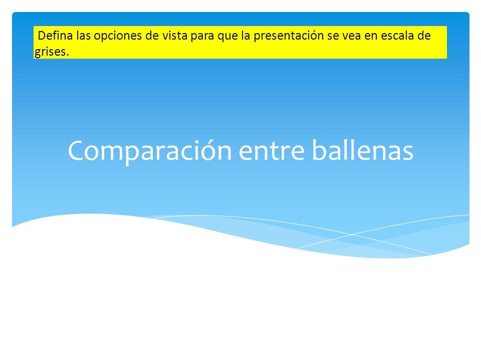 Comparación Ballenas con dientesBallenas con barbas En la vista Clasificador de diapositivas muestre todas las diapositivas en un tamaño 70%.
