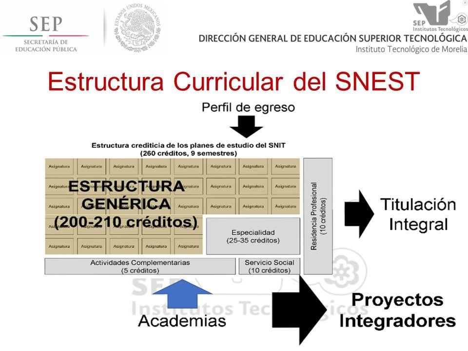 Estructura Curricular del SNEST