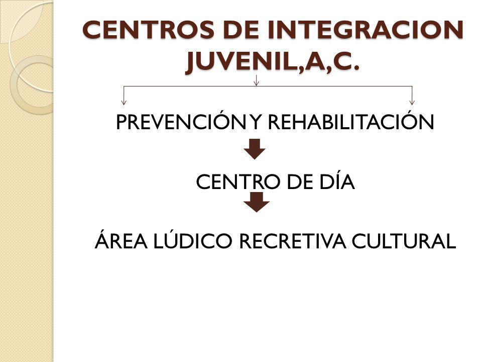 CENTROS DE INTEGRACION JUVENIL,A,C.