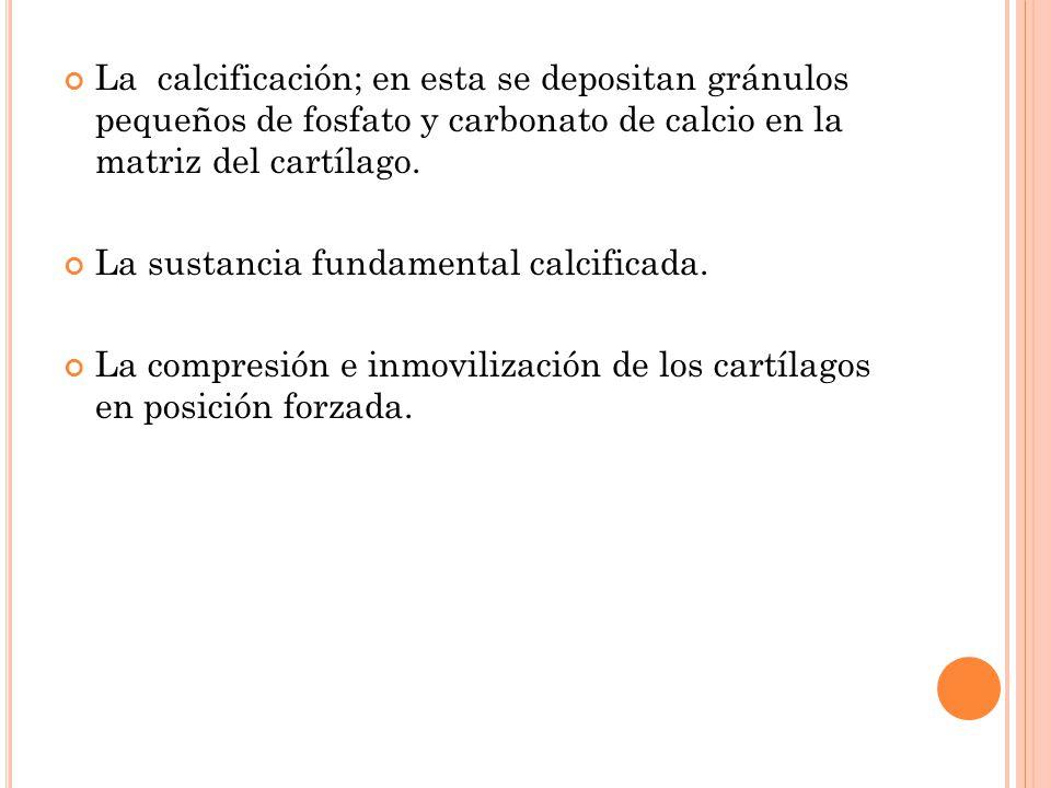 La calcificación; en esta se depositan gránulos pequeños de fosfato y carbonato de calcio en la matriz del cartílago. La sustancia fundamental calcifi