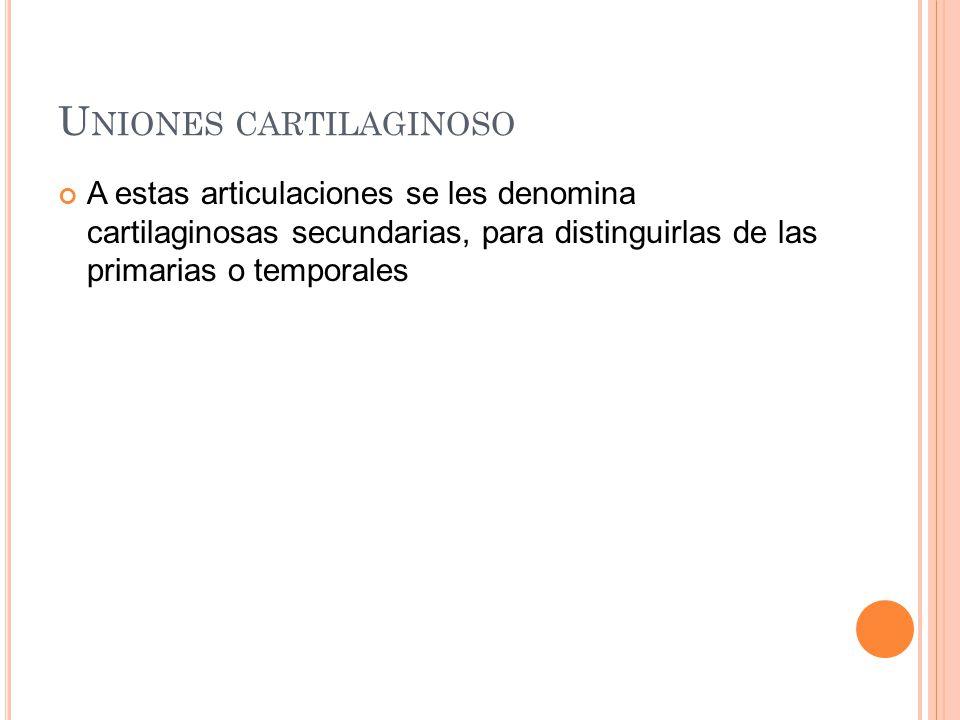 U NIONES CARTILAGINOSO A estas articulaciones se les denomina cartilaginosas secundarias, para distinguirlas de las primarias o temporales