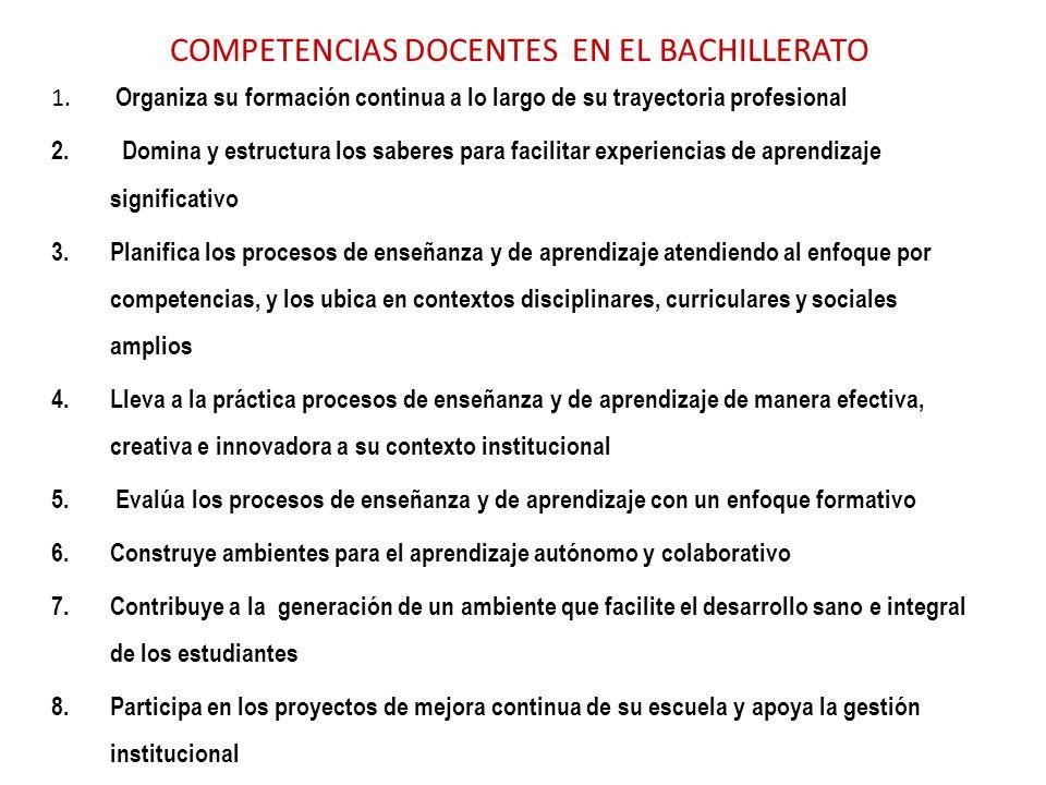 COMPETENCIAS DOCENTES EN EL BACHILLERATO 1. Organiza su formación continua a lo largo de su trayectoria profesional 2. Domina y estructura los saberes