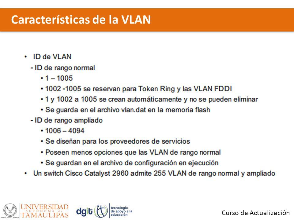 Características de la VLAN Curso de Actualización