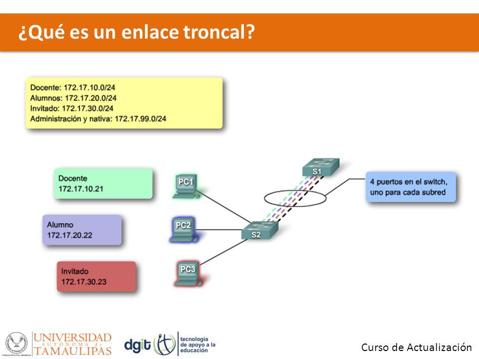¿Qué es un enlace troncal? Curso de Actualización