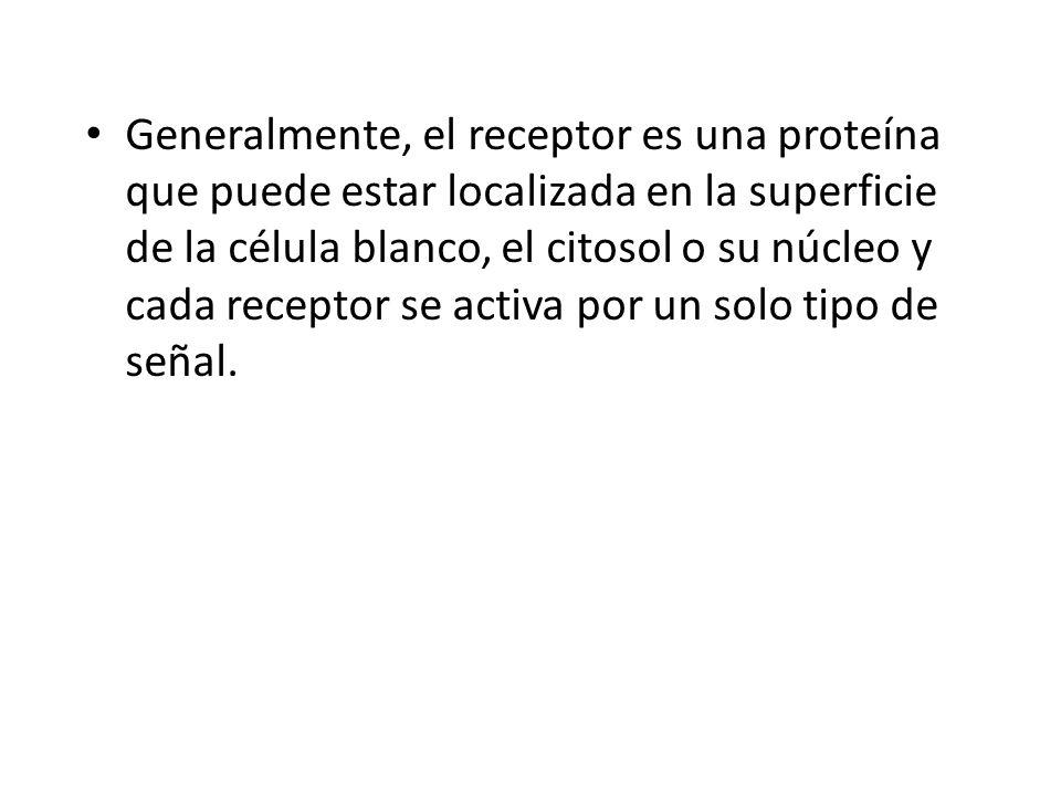 Generalmente, el receptor es una proteína que puede estar localizada en la superficie de la célula blanco, el citosol o su núcleo y cada receptor se a