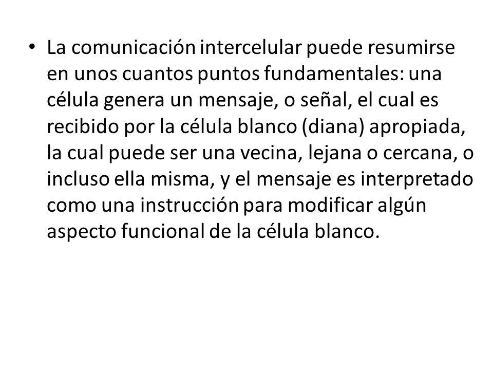 La comunicación intercelular puede resumirse en unos cuantos puntos fundamentales: una célula genera un mensaje, o señal, el cual es recibido por la c