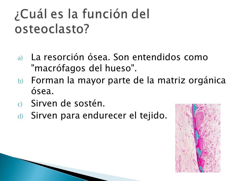 a) La resorción ósea. Son entendidos como
