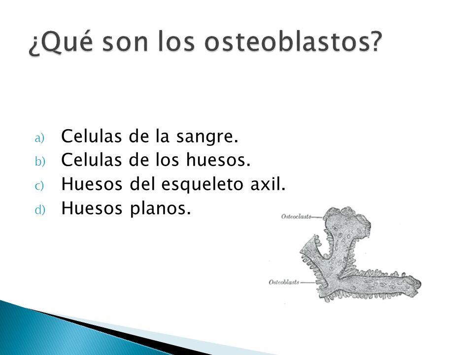 a) Celulas de la sangre. b) Celulas de los huesos. c) Huesos del esqueleto axil. d) Huesos planos.