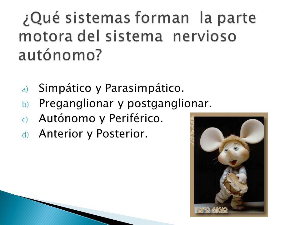 a) Simpático y Parasimpático. b) Preganglionar y postganglionar. c) Autónomo y Periférico. d) Anterior y Posterior.