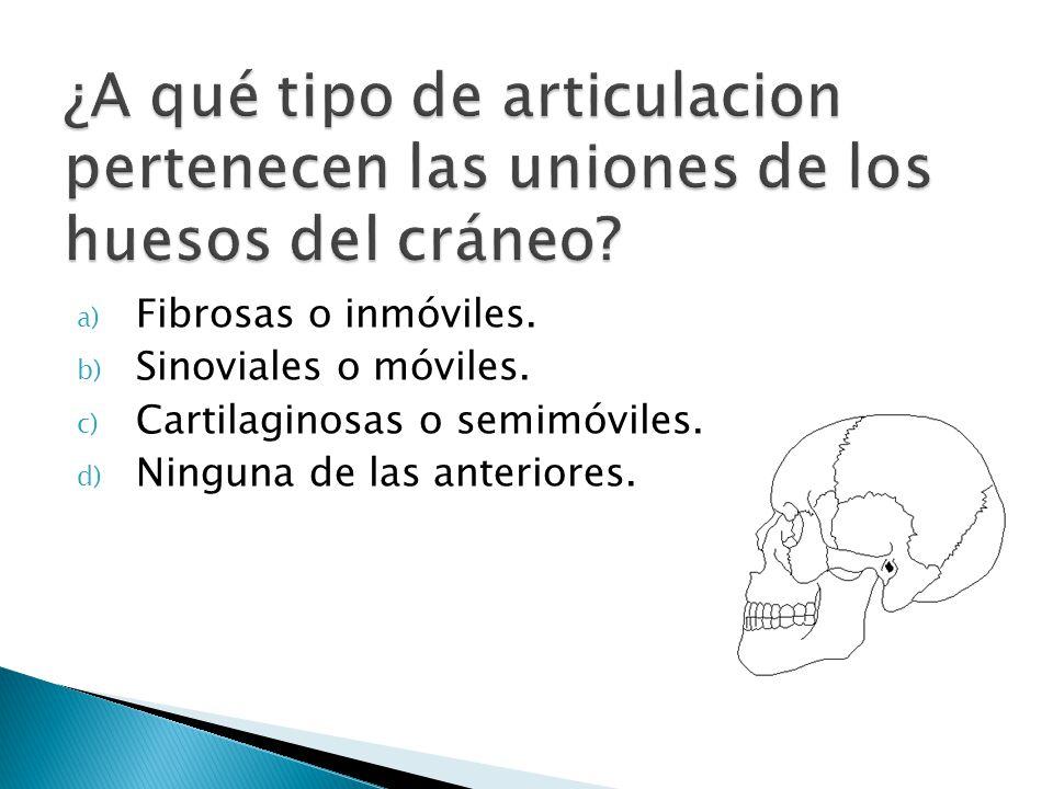 a) Fibrosas o inmóviles. b) Sinoviales o móviles. c) Cartilaginosas o semimóviles. d) Ninguna de las anteriores.