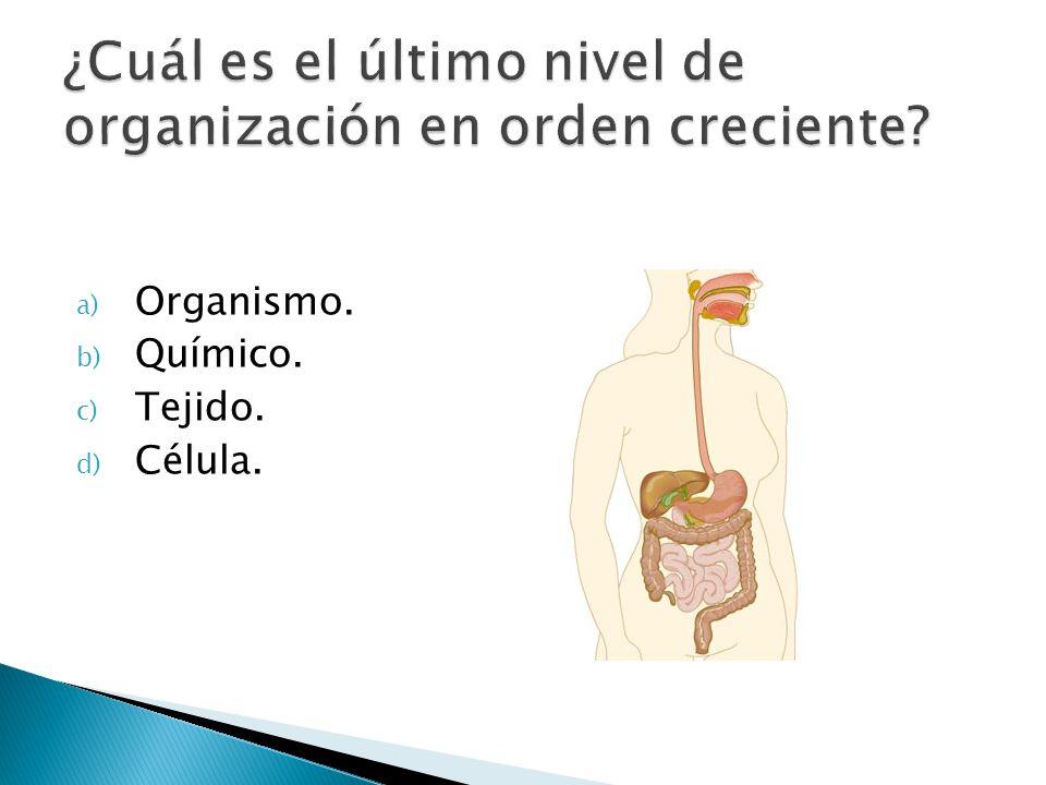 a) Organismo. b) Químico. c) Tejido. d) Célula.