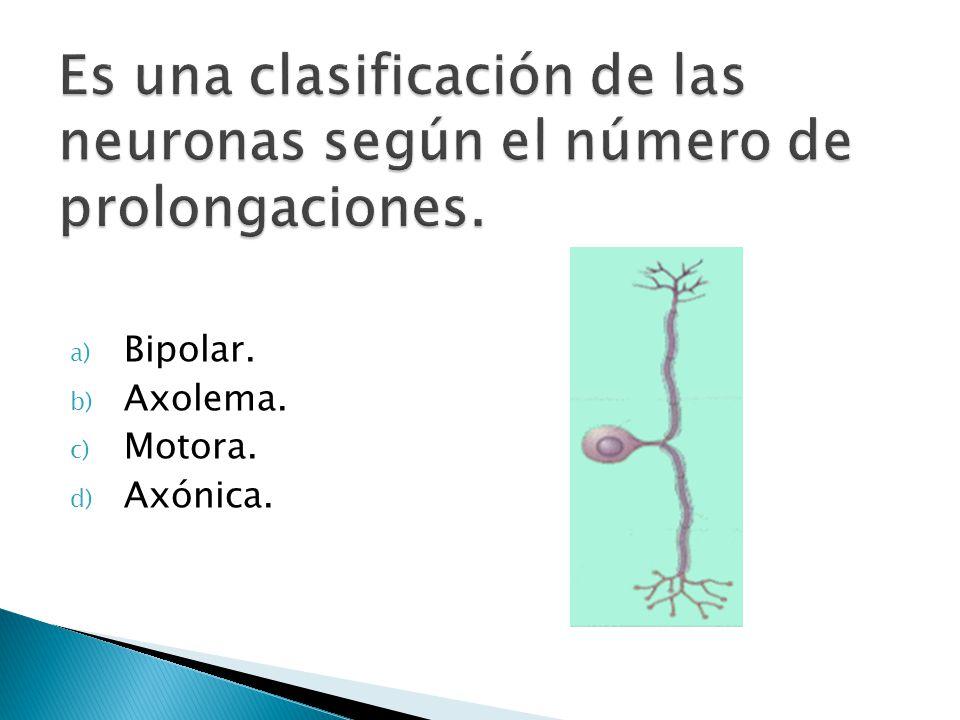 a) Bipolar. b) Axolema. c) Motora. d) Axónica.
