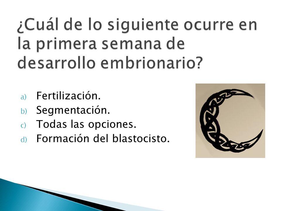 a) Fertilización. b) Segmentación. c) Todas las opciones. d) Formación del blastocisto.