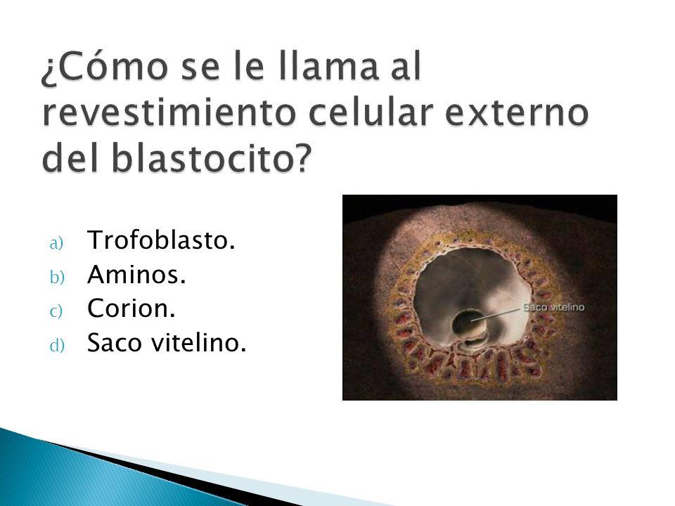 a) Trofoblasto. b) Aminos. c) Corion. d) Saco vitelino.