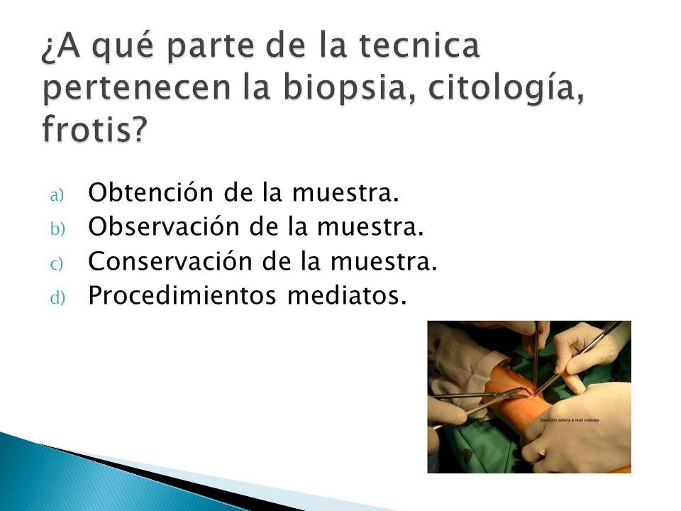a) Obtención de la muestra. b) Observación de la muestra. c) Conservación de la muestra. d) Procedimientos mediatos.