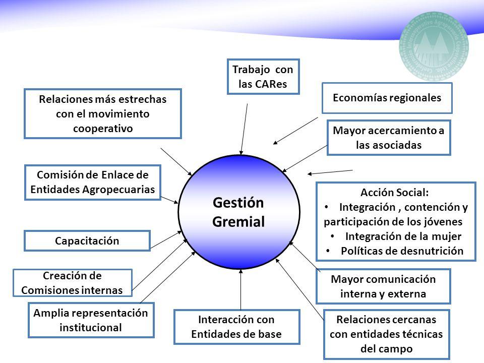 Gestión Gremial Trabajo con las CARes Mayor acercamiento a las asociadas Acción Social: Integración, contención y participación de los jóvenes Integra