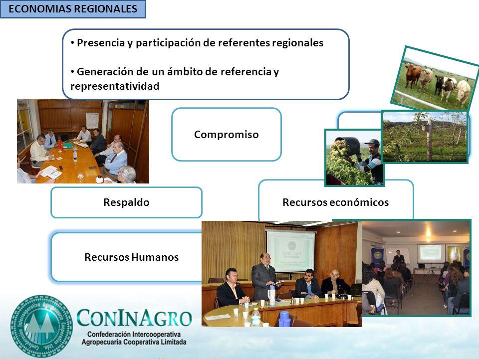 Compromiso Respaldo Recursos económicos Recursos Humanos ECONOMIAS REGIONALES Presencia y participación de referentes regionales Generación de un ámbi