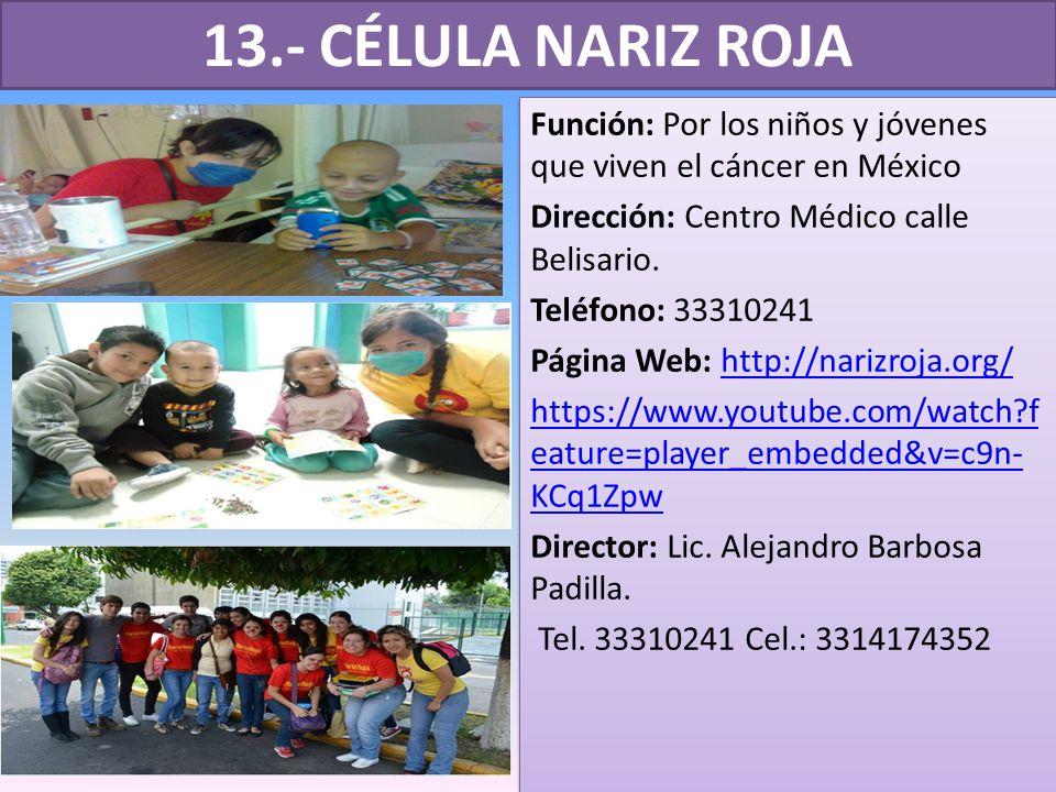 13.- CÉLULA NARIZ ROJA Función: Por los niños y jóvenes que viven el cáncer en México Dirección: Centro Médico calle Belisario.