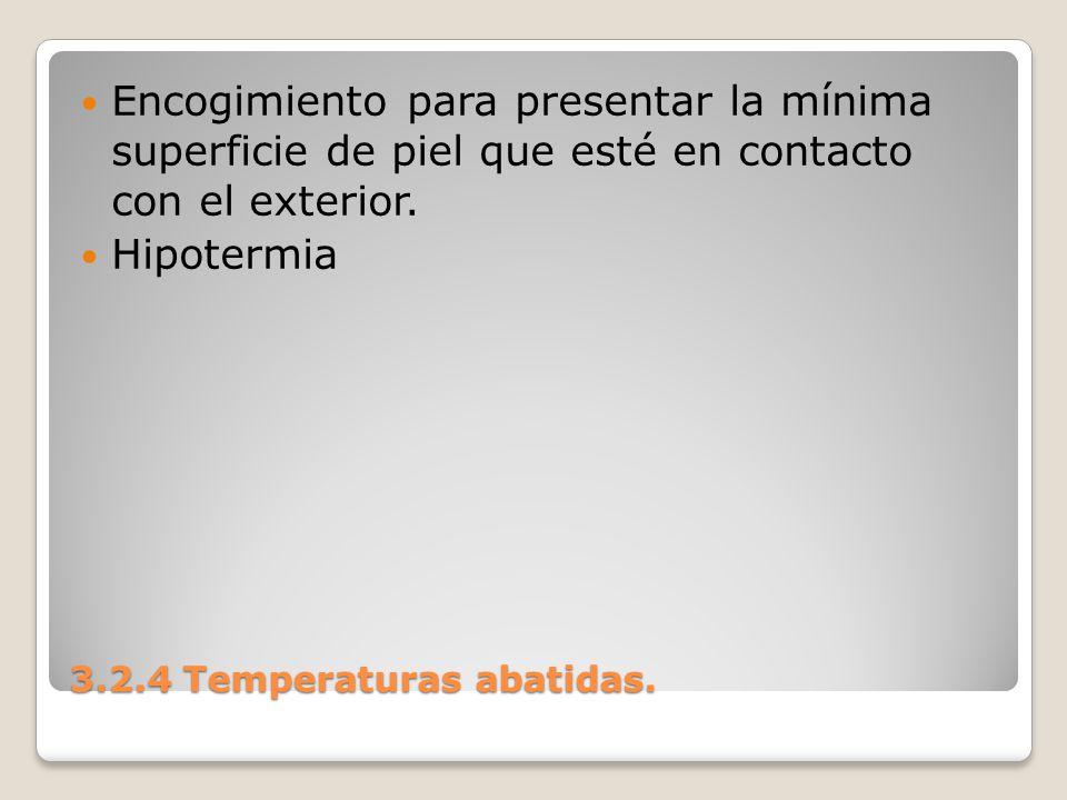 3.2.4 Temperaturas abatidas. Encogimiento para presentar la mínima superficie de piel que esté en contacto con el exterior. Hipotermia