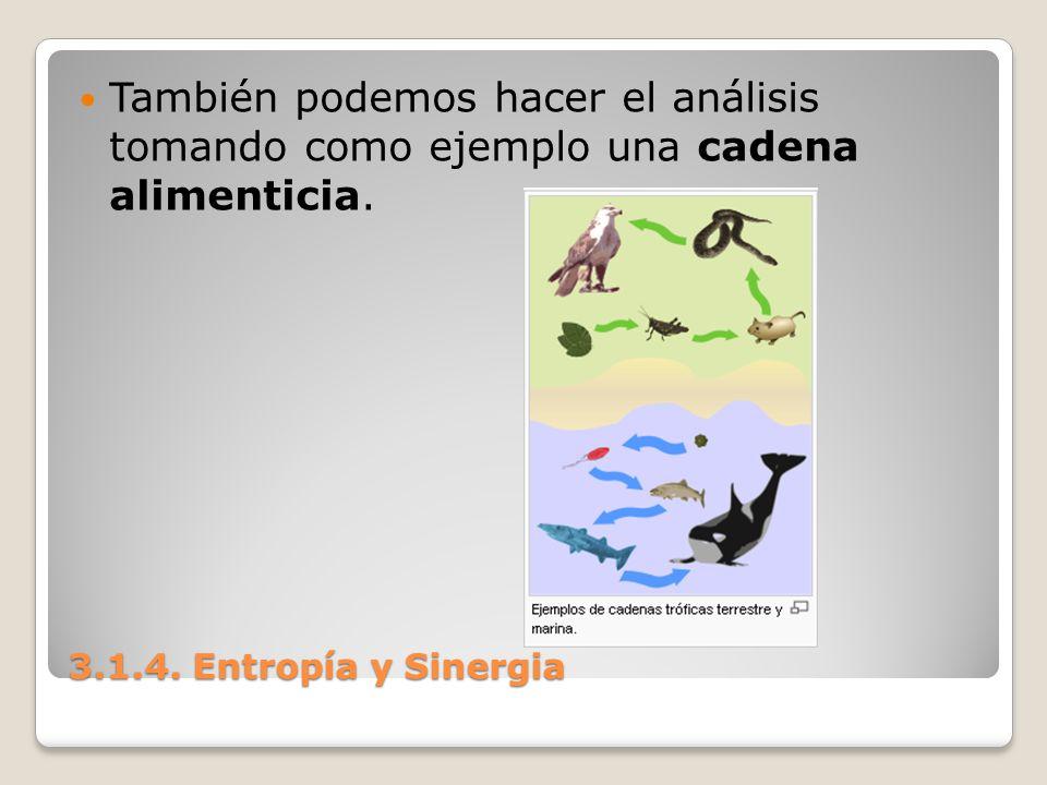 3.1.4. Entropía y Sinergia También podemos hacer el análisis tomando como ejemplo una cadena alimenticia.