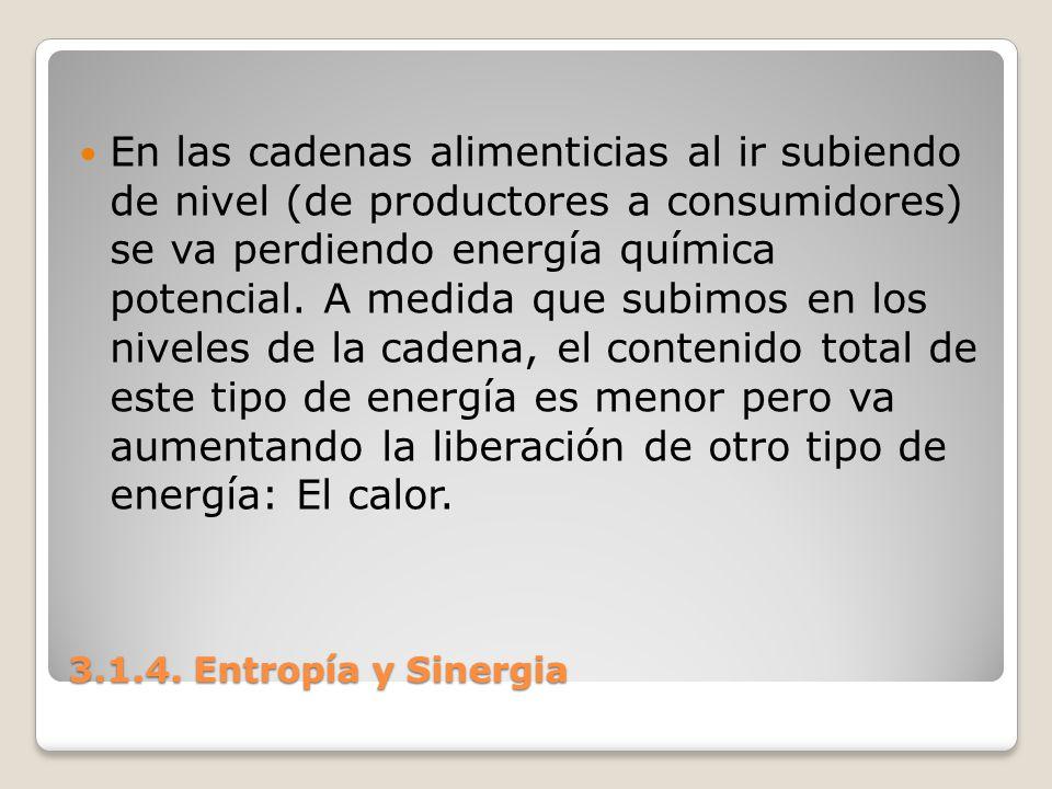 3.1.4. Entropía y Sinergia En las cadenas alimenticias al ir subiendo de nivel (de productores a consumidores) se va perdiendo energía química potenci
