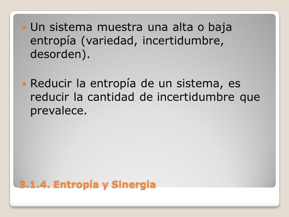 3.1.4. Entropía y Sinergia Un sistema muestra una alta o baja entropía (variedad, incertidumbre, desorden). Reducir la entropía de un sistema, es redu