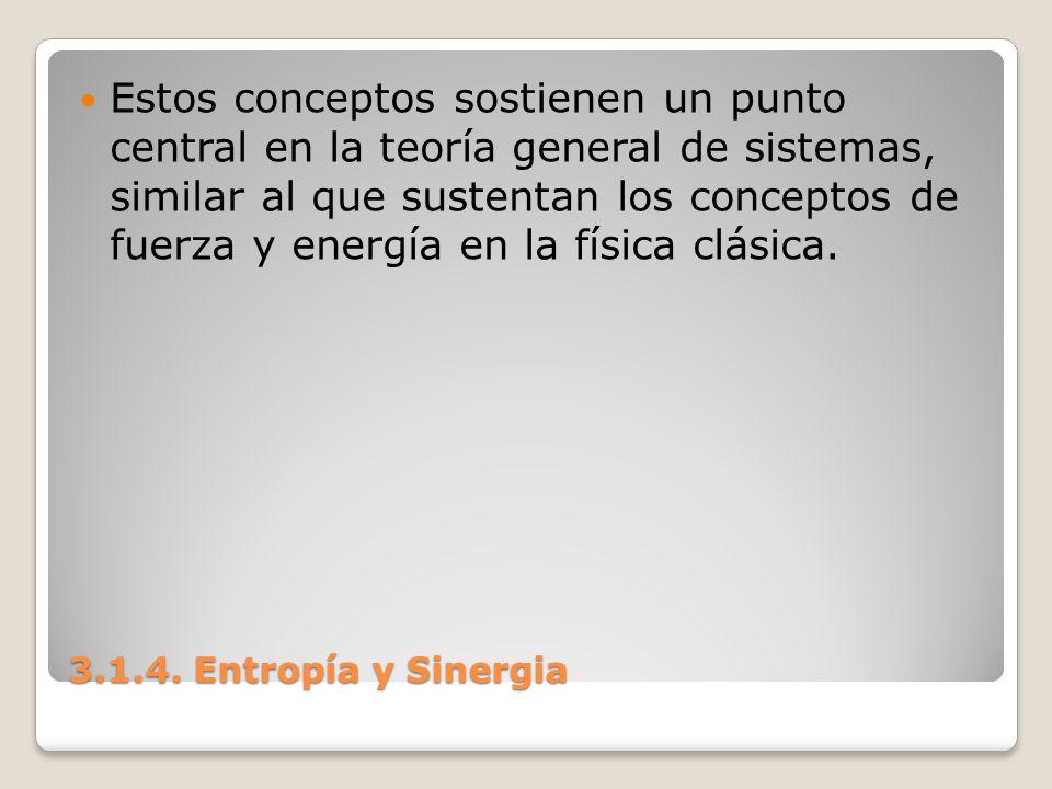 3.1.4. Entropía y Sinergia Estos conceptos sostienen un punto central en la teoría general de sistemas, similar al que sustentan los conceptos de fuer