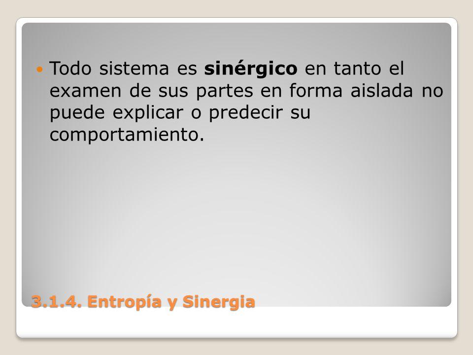 3.1.4. Entropía y Sinergia Todo sistema es sinérgico en tanto el examen de sus partes en forma aislada no puede explicar o predecir su comportamiento.