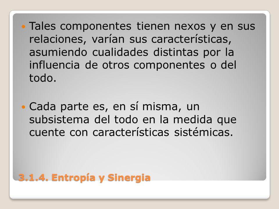 3.1.4. Entropía y Sinergia Tales componentes tienen nexos y en sus relaciones, varían sus características, asumiendo cualidades distintas por la influ