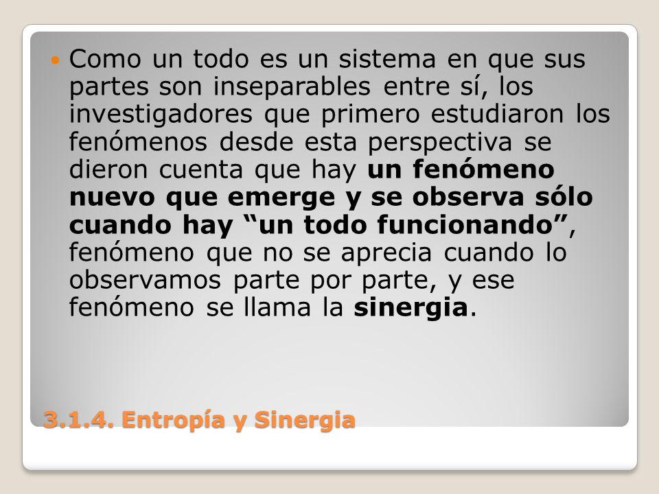 3.1.4. Entropía y Sinergia Como un todo es un sistema en que sus partes son inseparables entre sí, los investigadores que primero estudiaron los fenóm