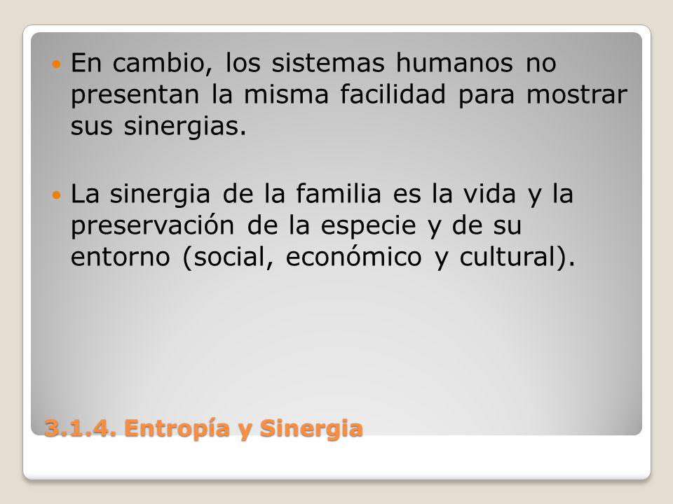 3.1.4. Entropía y Sinergia En cambio, los sistemas humanos no presentan la misma facilidad para mostrar sus sinergias. La sinergia de la familia es la