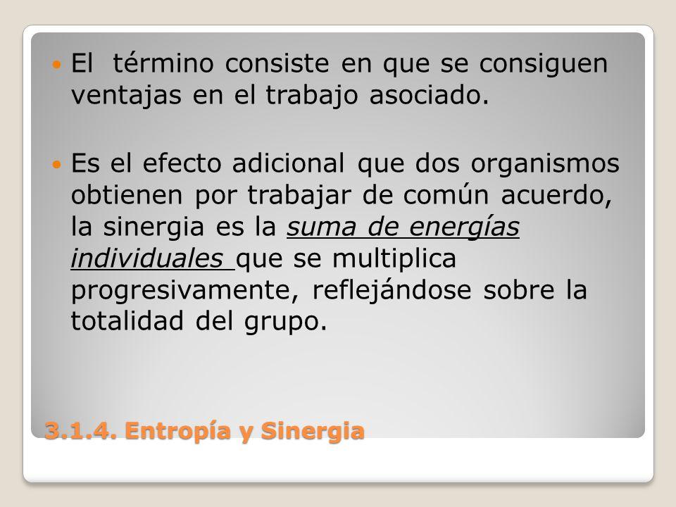 3.1.4. Entropía y Sinergia El término consiste en que se consiguen ventajas en el trabajo asociado. Es el efecto adicional que dos organismos obtienen
