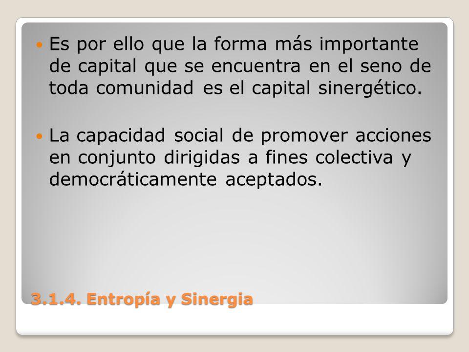 3.1.4. Entropía y Sinergia Es por ello que la forma más importante de capital que se encuentra en el seno de toda comunidad es el capital sinergético.