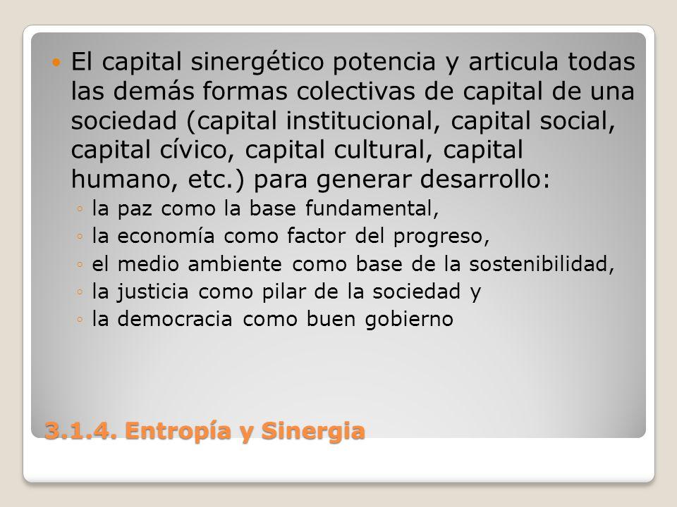 3.1.4. Entropía y Sinergia El capital sinergético potencia y articula todas las demás formas colectivas de capital de una sociedad (capital institucio