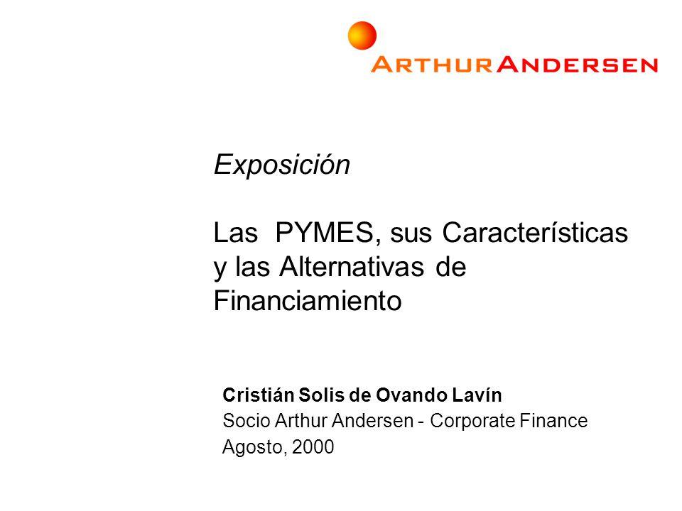 Exposición Las PYMES, sus Características y las Alternativas de Financiamiento Cristián Solis de Ovando Lavín Socio Arthur Andersen - Corporate Financ