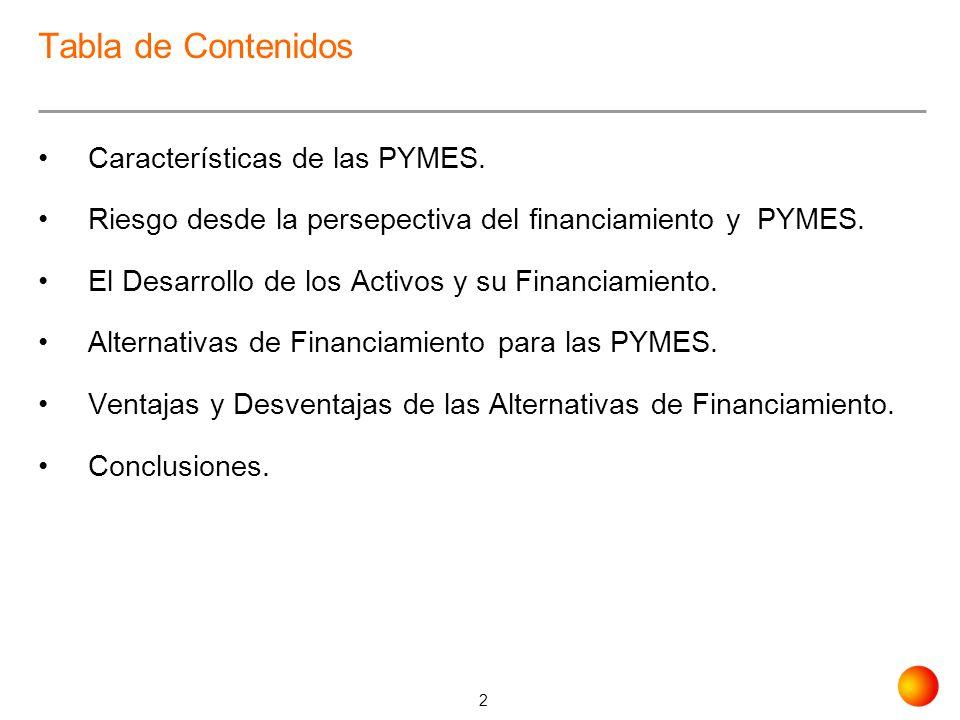 2 Tabla de Contenidos Características de las PYMES. Riesgo desde la persepectiva del financiamiento y PYMES. El Desarrollo de los Activos y su Financi